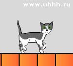 Флеш игры - Кошка